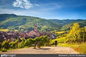 alsace-vignobles-route-des-vins-paysage-randonnée-promenade