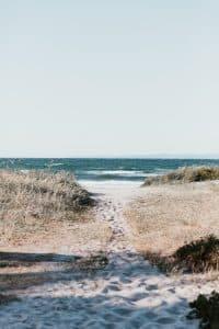 Dunes et océan