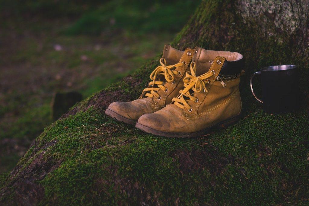 chaussures de randonnée posées au pied d'un arbre