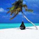 fauteuil accroché à un cocotier sur une plage